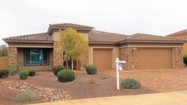 4496 N 183RD Avenue, Goodyear, AZ 85395 (MLS #5855731) :: The Laughton Team