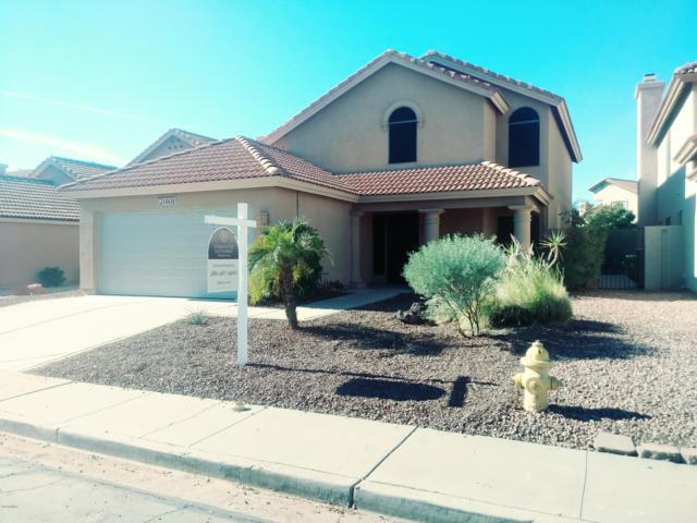14430 S Cholla Canyon Drive, Phoenix, AZ 85044 (MLS #5855737) :: My Home Group