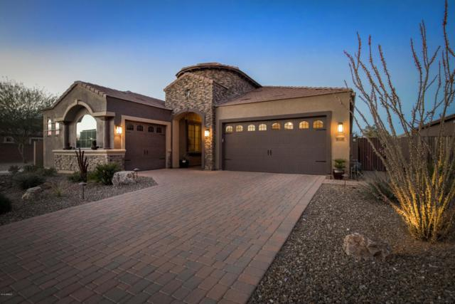 226 E Lynx Place, Chandler, AZ 85249 (MLS #5855761) :: The Bill and Cindy Flowers Team