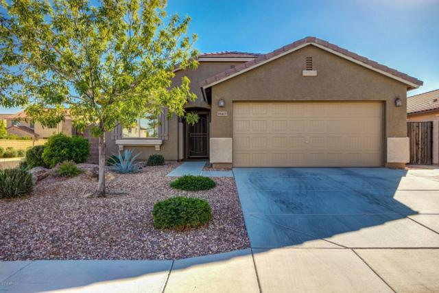 18415 W Surprise Farms Loop N, Surprise, AZ 85388 (MLS #5855762) :: The Bill and Cindy Flowers Team