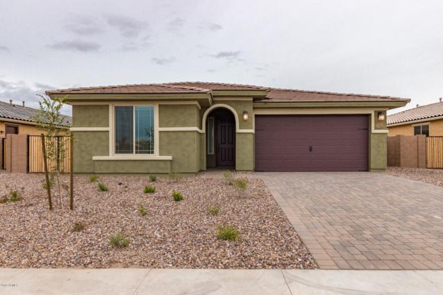 2512 E Augusta Avenue, Gilbert, AZ 85298 (MLS #5855787) :: Door Number 2