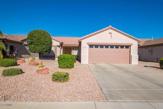 15174 W Camino Estrella Drive, Surprise, AZ 85374 (MLS #5855810) :: The Results Group