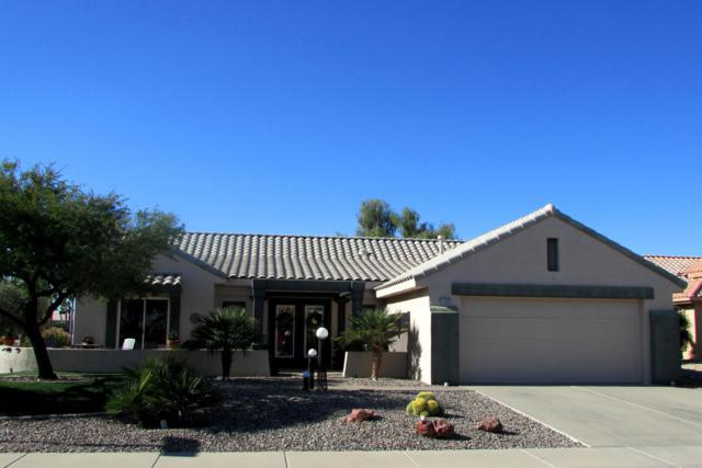 23202 N Via De La Caballa, Sun City West, AZ 85375 (MLS #5855828) :: Riddle Realty