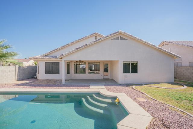 2400 N 107TH Lane, Avondale, AZ 85392 (MLS #5855889) :: Yost Realty Group at RE/MAX Casa Grande