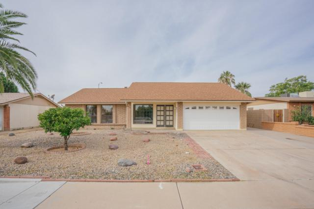 8604 N 106TH Lane, Peoria, AZ 85345 (MLS #5855916) :: The Results Group