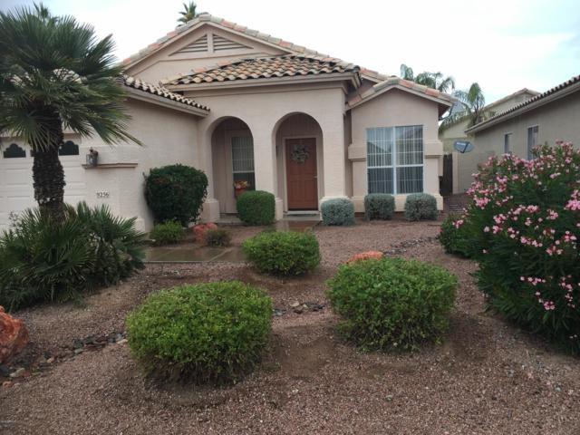 9256 E Blanche Drive, Scottsdale, AZ 85260 (MLS #5855939) :: Desert Home Premier