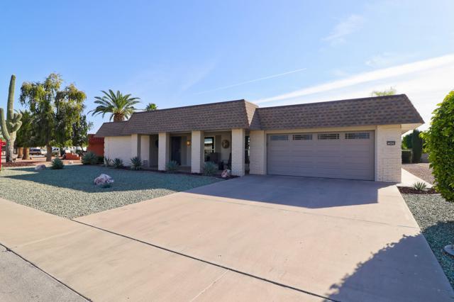 10609 W Mimosa Drive, Sun City, AZ 85373 (MLS #5855967) :: Conway Real Estate