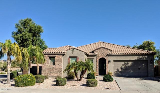 4263 N 153RD Lane, Goodyear, AZ 85395 (MLS #5855970) :: REMAX Professionals