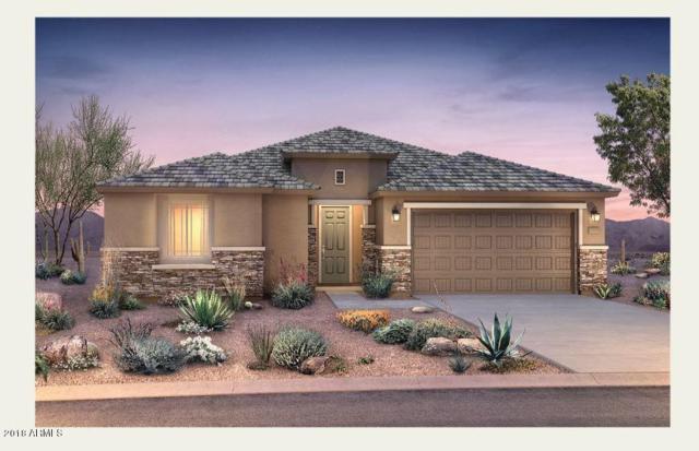 7332 W Quail Track Drive, Peoria, AZ 85383 (MLS #5856010) :: The Garcia Group