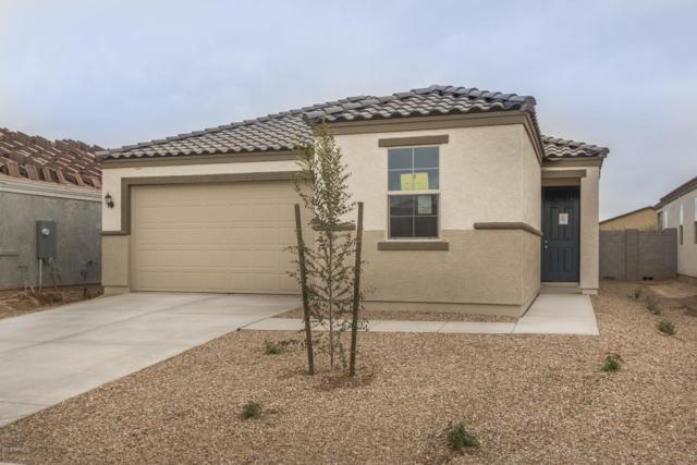 1088 W Lowell Drive, San Tan Valley, AZ 85140 (MLS #5856012) :: Realty Executives