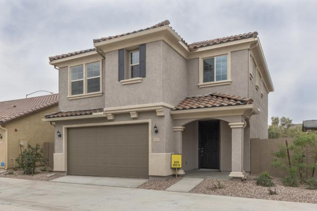 1157 S Amulet, Mesa, AZ 85208 (MLS #5856019) :: Door Number 2