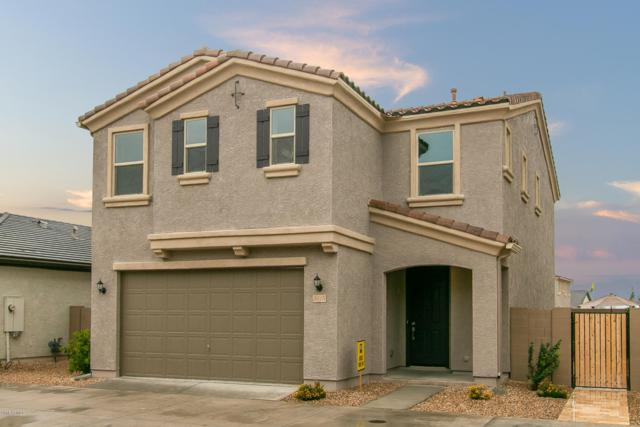 5015 E Desert Forest Trail, Cave Creek, AZ 85331 (MLS #5856022) :: The Daniel Montez Real Estate Group