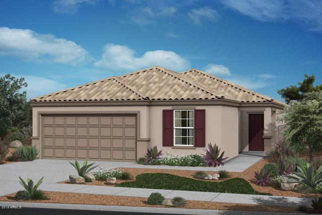36930 N El Morro Trail, San Tan Valley, AZ 85140 (MLS #5856028) :: Realty Executives
