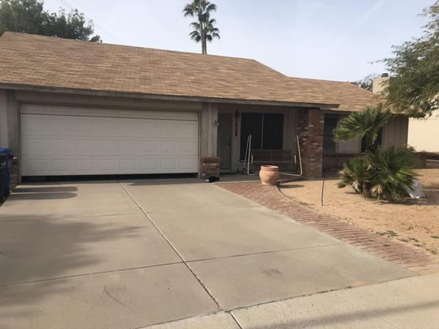 1428 N Matlock, Mesa, AZ 85203 (MLS #5856035) :: Door Number 2