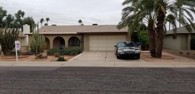 3409 S Bala Drive S, Tempe, AZ 85282 (MLS #5856056) :: Door Number 2