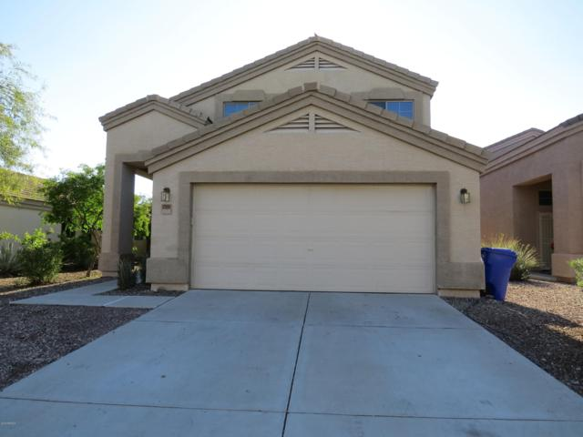 23869 W Twilight Trail, Buckeye, AZ 85326 (MLS #5856066) :: Desert Home Premier