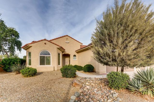 20210 N 266TH Avenue, Buckeye, AZ 85396 (MLS #5856068) :: Desert Home Premier