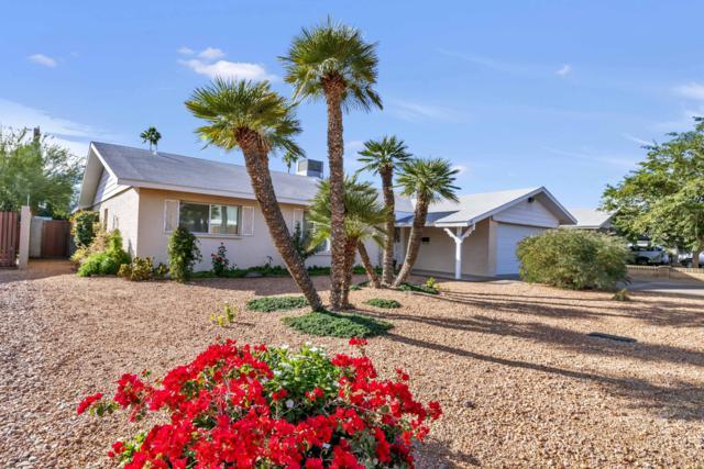 8719 E Lincoln Drive, Scottsdale, AZ 85250 (MLS #5856085) :: Realty Executives