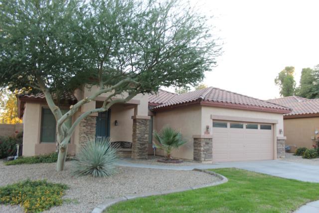 15395 W Jackson Street, Goodyear, AZ 85338 (MLS #5856088) :: REMAX Professionals