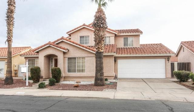 3853 W Rene Drive, Chandler, AZ 85226 (MLS #5856103) :: Occasio Realty