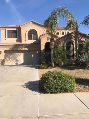 2897 S 162ND Lane, Goodyear, AZ 85338 (MLS #5856108) :: REMAX Professionals