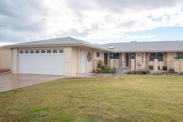 10841 W Mountain View Road, Sun City, AZ 85351 (MLS #5856141) :: Yost Realty Group at RE/MAX Casa Grande