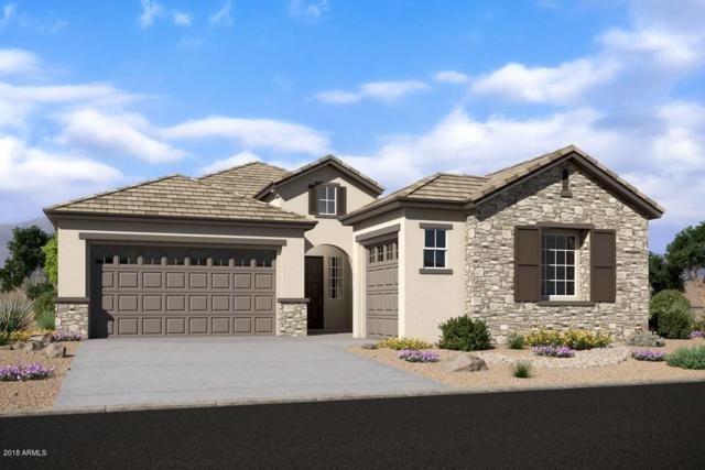 22476 N 96TH Drive, Peoria, AZ 85383 (MLS #5856167) :: The Garcia Group