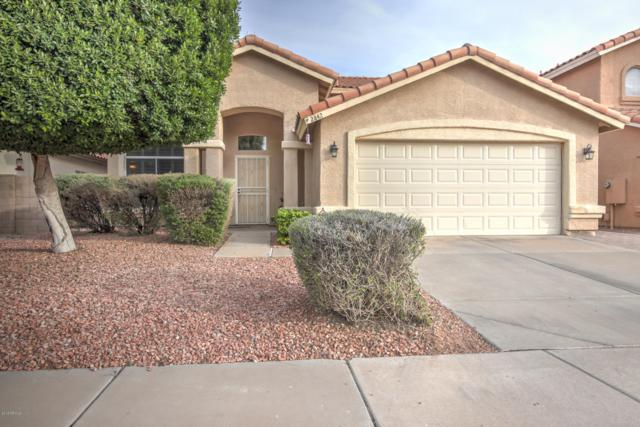 2842 W Gail Drive, Chandler, AZ 85224 (MLS #5856174) :: Door Number 2