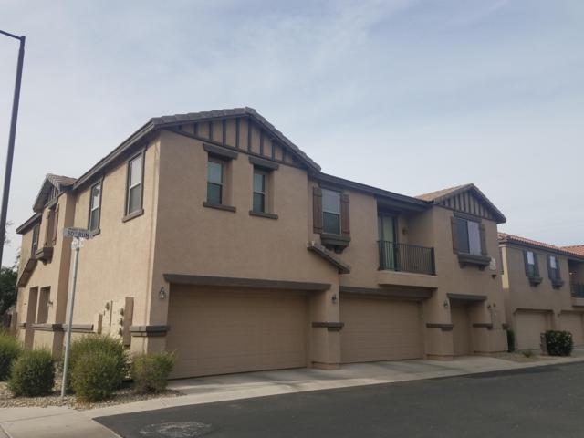 7526 S 30TH Run S, Phoenix, AZ 85042 (MLS #5856175) :: Door Number 2