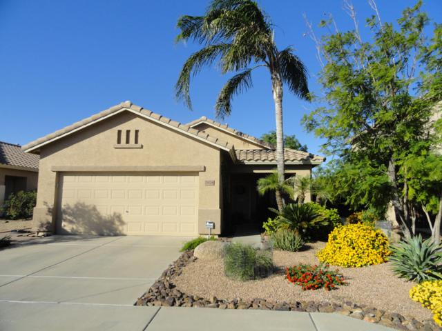 25028 N 41ST Avenue, Phoenix, AZ 85083 (MLS #5856193) :: Door Number 2