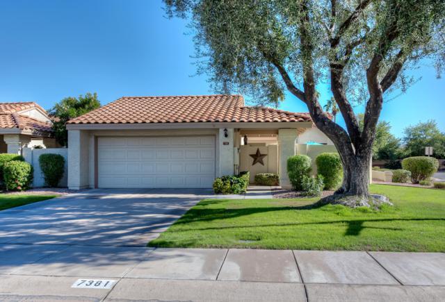 7381 S Bonarden Lane, Tempe, AZ 85283 (MLS #5856198) :: Door Number 2