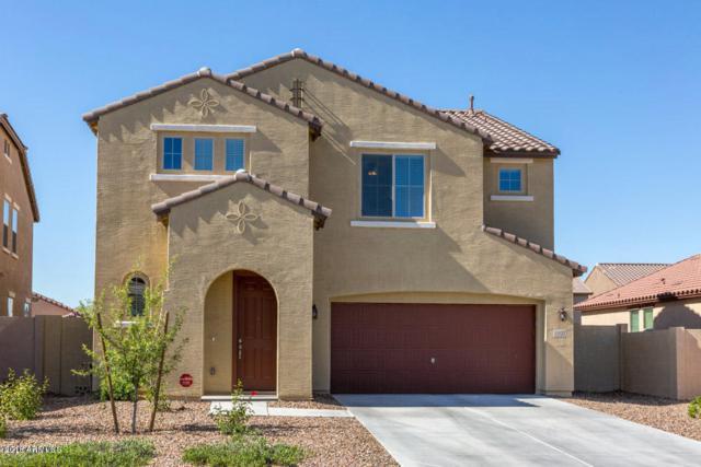 11127 E Shepperd Avenue, Mesa, AZ 85212 (MLS #5856235) :: The Garcia Group
