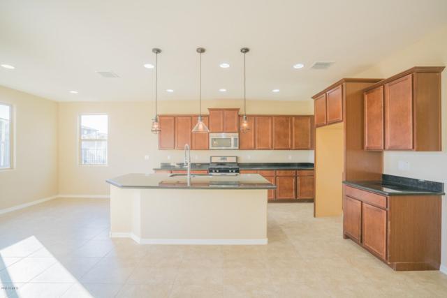 18325 W Turquoise Avenue, Waddell, AZ 85355 (MLS #5856243) :: Kepple Real Estate Group