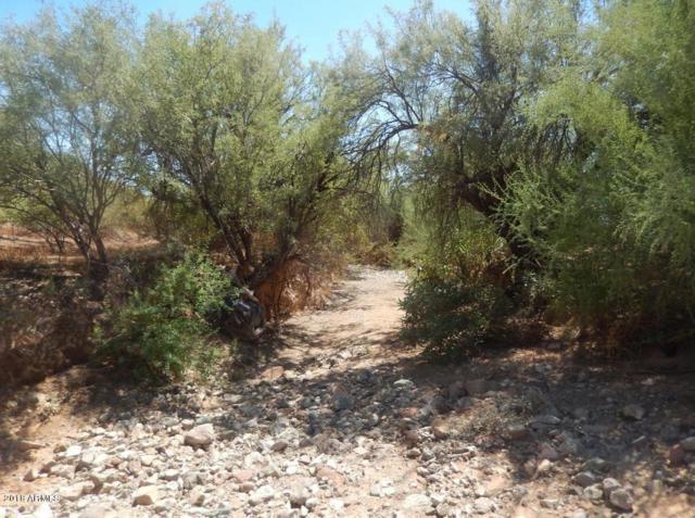 0 N 12 Street, Phoenix, AZ 85085 (MLS #5856265) :: Door Number 2