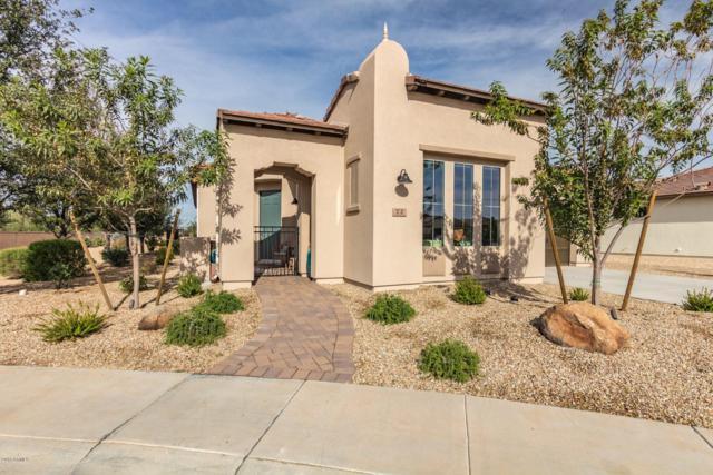 72 E Atole Court, San Tan Valley, AZ 85140 (MLS #5856266) :: Yost Realty Group at RE/MAX Casa Grande