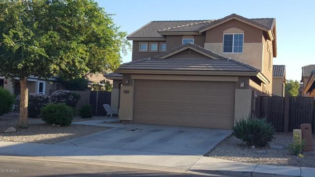 41243 W Little Drive, Maricopa, AZ 85138 (MLS #5856291) :: REMAX Professionals