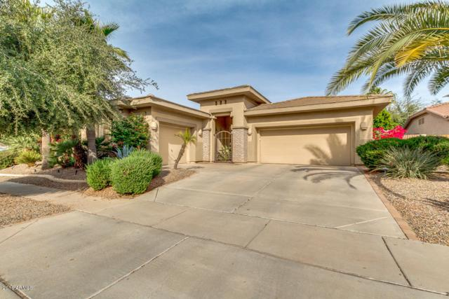 4686 E Ruffian Road, Gilbert, AZ 85297 (MLS #5856314) :: The Jesse Herfel Real Estate Group