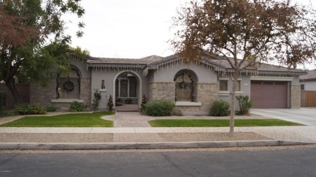 881 W Macaw Drive, Chandler, AZ 85286 (MLS #5856327) :: The Daniel Montez Real Estate Group