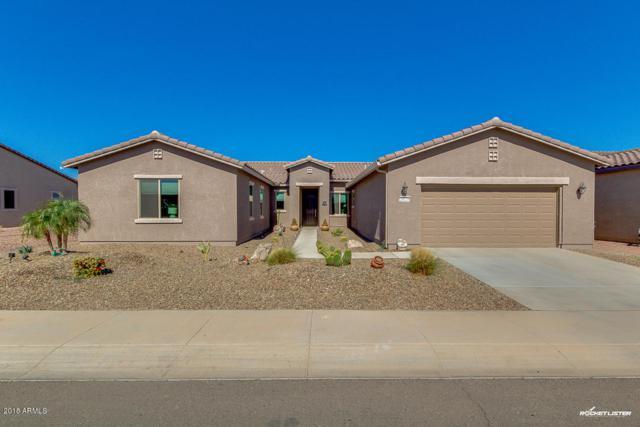 20224 N Peppermint Drive, Maricopa, AZ 85138 (MLS #5856336) :: REMAX Professionals
