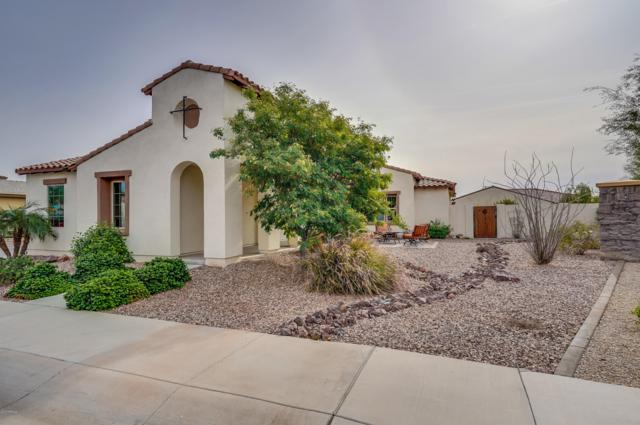 16227 W Holly Street, Goodyear, AZ 85395 (MLS #5856350) :: Scott Gaertner Group