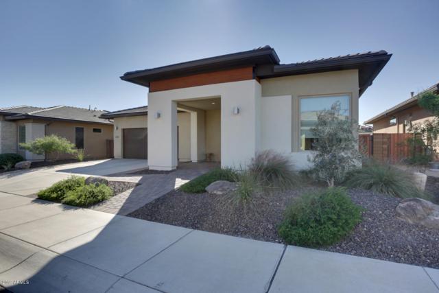 13225 W Skinner Drive, Peoria, AZ 85383 (MLS #5856364) :: REMAX Professionals