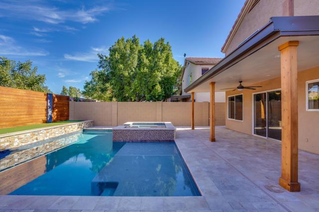 9150 W John Cabot Road, Peoria, AZ 85382 (MLS #5856382) :: REMAX Professionals