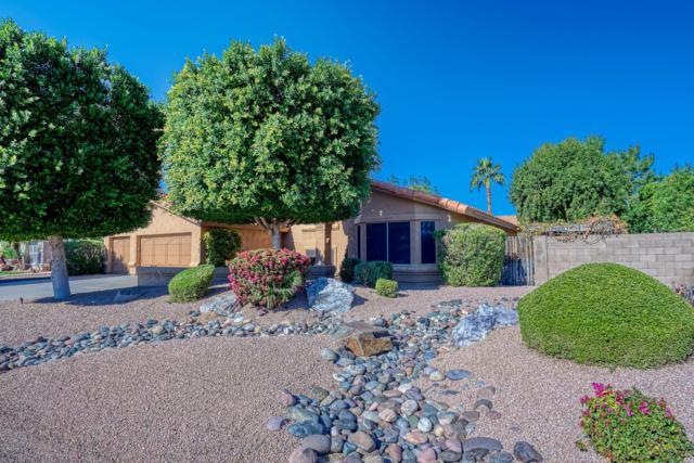 5322 W West Wind Drive, Glendale, AZ 85310 (MLS #5856404) :: REMAX Professionals