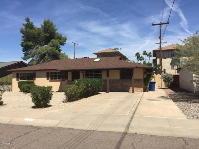 703 S Starley Drive, Tempe, AZ 85281 (MLS #5856444) :: Kepple Real Estate Group