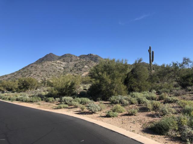 34779 N Los Reales Drive, Cave Creek, AZ 85331 (MLS #5856452) :: REMAX Professionals
