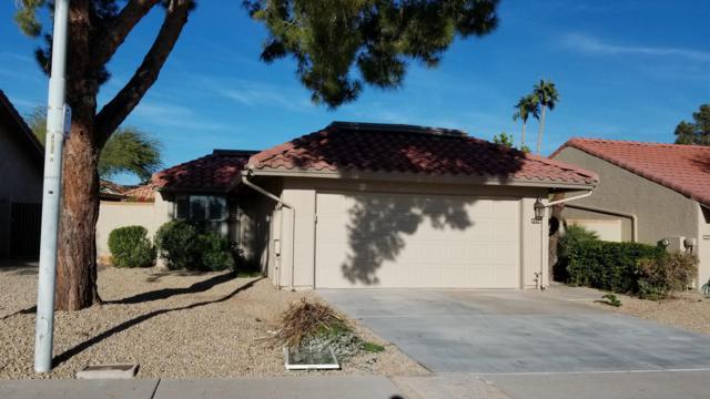 4256 E Sandia Street, Phoenix, AZ 85044 (MLS #5856482) :: Kepple Real Estate Group