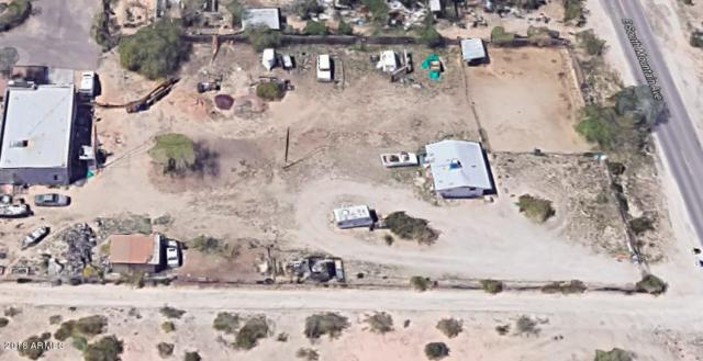 8437 S 22ND Place, Phoenix, AZ 85042 (MLS #5856495) :: Yost Realty Group at RE/MAX Casa Grande