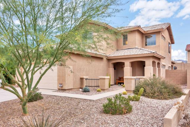 23840 W Mesquite Drive, Buckeye, AZ 85396 (MLS #5856510) :: The Results Group