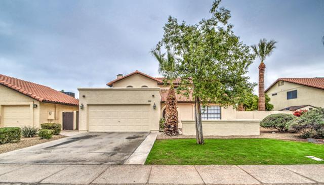 2981 N Benson Lane, Chandler, AZ 85224 (MLS #5856523) :: CC & Co. Real Estate Team
