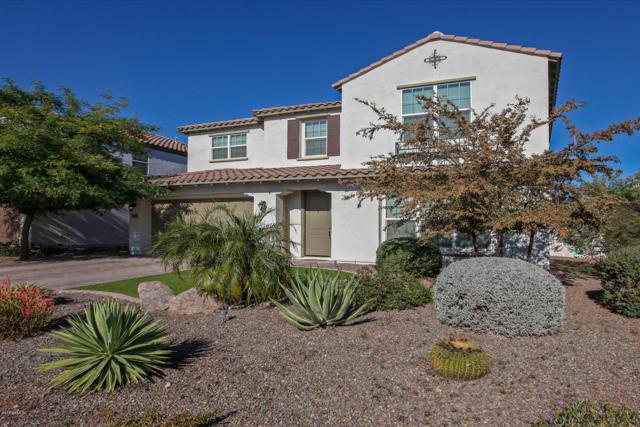 4284 E Glacier Place, Chandler, AZ 85249 (MLS #5856571) :: Kepple Real Estate Group